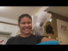 """Make sure to share this video if you Smile :D Check out this video and see how cute he's trying to pronounce """"Shower"""" phenomenal Video of our Cockatoo Joseph. Bird Gif, Bird Food, Cockatiel, Pet Birds, Make Me Smile, Joseph, Things To Think About, Bird Videos, Parrots"""