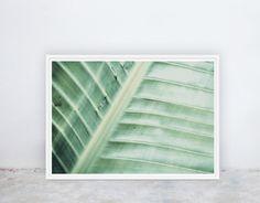 Banana Leaf: Tropical Banana Leaf Greenery by NineLivesCollective Printable Art, Printables, Nine Lives, Wall Ideas, Beach Resorts, Bedroom Wall, Palm Trees, Greenery, Plant Leaves