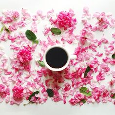 sophiahsin yesterday's blooms and today's coffee #monday #morning #coffee