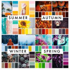 Which season is your favorite for color inspiration? (These are all from The Color Catalog - get it on my website! Colour Pallette, Colour Schemes, Color Trends, Color Combos, Colour Combinations Fashion, Color Combinations For Clothes, Wardrobe Color Guide, Color Palette Challenge, Color Psychology