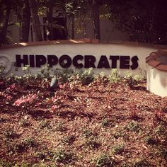 mariamooney | My Time At Hippocrates Health Institute