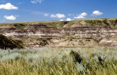 Badands, Alberta, Canada (1588×1024)