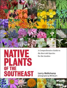 Native Plants of the Southeast: A Comprehensive Guide to the Best 460 Species for the Garden from Timber Press