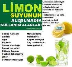 Limon suyunun inanılmaz faydaları! Limon, sindirim sisteminden bağışıklık sistemine destek olmaya, viral enfeksiyonlardan iltihap azaltmaya varıncaya kadar sağlığınız için oldukça önemlidir. #limon #limonlusuyu @saglikhaberleri