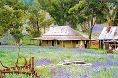 An early settler's cottage in South Australia Adelaide South Australia, Melbourne Australia, Australia Travel, Brisbane, Colonial Cottage, Old Cottage, Australian Bush, Australian Homes, Australia Animals