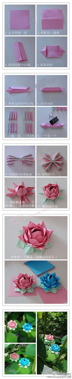 Origami Lotus Flower - photo diagrams.