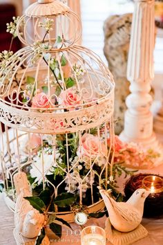 Birdcage as centerpiece, so sweet. Dove Wedding Photography