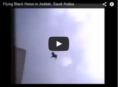 A Flying Black Horse Captured In Jeddah, Saudi Arabia