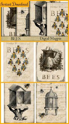 Bees vintage design instant download #ad #Etsy #bee #bees #instantdownload
