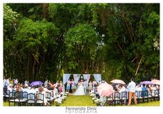Casamento de Fada: 1 Dia Depois - Enfim casados!