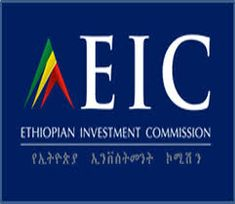 350 Best Ethiopian News images in 2019   Ethiopia, Africa