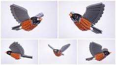 Lego Birds: North America: Arnie the American Robin