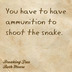 You have to have ammunition to shoot the snack... read your Bible! Beth Moore Breaking Free