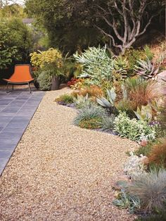 A gorgeous California no-lawn garden -- love that curvy border of succulents and grasses! Hooray for xeriscaping! Succulent Landscaping, Succulents Garden, Backyard Landscaping, Backyard Ideas, California Front Yard Landscaping Ideas, Luxury Landscaping, Desert Landscape Backyard, Outdoor Ideas, Landscaping Edging