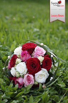 Red, pink and white roses complement each other beautifully in a wedding bouquet. Romantic, elegant yet colorful! springintheair.com