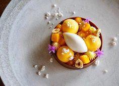Beautiful Yuzu Tart by @yusuke.1019 . #DessertMasters
