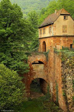 Heidelberg, State of Badden-Wurttenberg, GERMANY - My Bitsch ancestors came from…