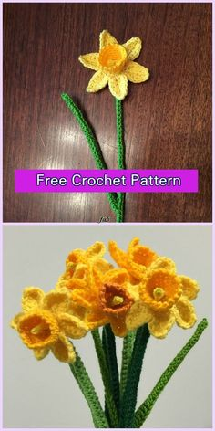 Crochet Daffodil Flower Free Patterns - Crochet Daffodils Free Pattern
