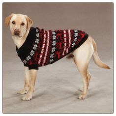 The Christmas Sweater i\u0027m ordering for my yellow lab hahaha its