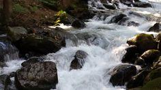 Natur pur: rauschender Waldbach Waterfall, Outdoor, Woodland Forest, Outdoors, Waterfalls, Outdoor Games, Rain, Outdoor Life