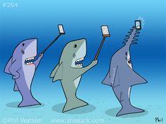 shark-cartoon-264