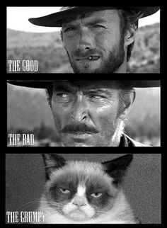 the good, the bad, and the grumpy