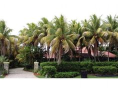 View a virtual tour of Private Address 337949821 Palmetto Bay, Fl 33157