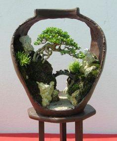 Very creative bonsai composition Amazing composition. This bonsai is grown in a broken pot sideways. Very creative bonsai composition Amazing composition. This bonsai is grown in a broken pot sideways. Flowering Bonsai Tree, Bonsai Tree Types, Bonsai Tree Care, Indoor Bonsai Tree, Mini Bonsai, Bonsai Plants, Bonsai Trees, Ikebana, Moss Garden