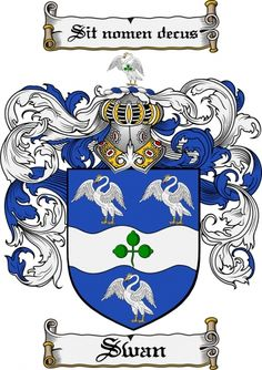 Swan Coat of Arms Swan Family Crest Instant Download - for sale, $7.99 at Scubbly