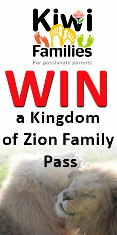 Win a Kingdom of Zion Family Pass Lions, Wildlife, Lion