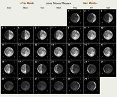 Farmers Almanac Moon phase calendar.   Plant root vegies during the new or waning moons and above ground during the waxing and full.