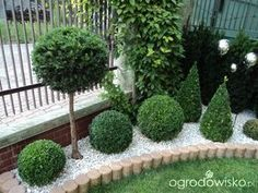 Front garden inspiration.
