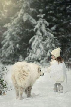 A stroll in the wintertime garden...