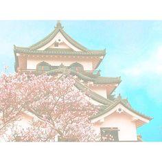 【mayu_tkmt_22】さんのInstagramをピンしています。 《🌸🏯🌸 . . 春休みに行った、彦根城🏯 . . 滋賀県、食べ物すごく美味しくて、本当にいい所だった◎ また行きたい💭 . . 今日のバイオリン、本当凄かった🎻 最近、投稿多くて、すいません🙏 . . #彦根城 #hikone #castle #滋賀県 #shiga #桜 #cherryblossom #pink #空 #sky #bluesky #blue #japan #ilovejapan #綺麗 #beautiful #写真 #photo #photography #写真好きな人と繋がりたい #instagram #instagood #followme #l4l #f4f》