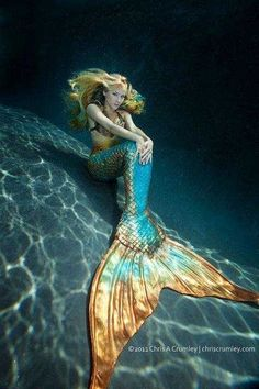 This reminds me of a place I used to visit in Florida when I was a kid (1970's) visiting my grandparents. It was called weeki wachee and these ladies would put on mermaid tails and put on a swim show in a giant glass tank. It was awesome.