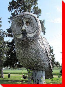 Grey Owl - Portage La Prairie, Manitoba