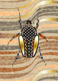 This beetle was designed with the inspiration of Africa,bugs,patterns and textures. African Design, Beetle, Bugs, Insects, Texture, Pattern, Inspiration, June Bug, Surface Finish