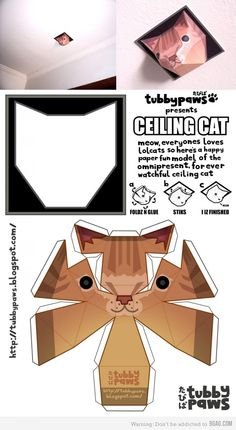 Make your own ceiling cat and freak people out
