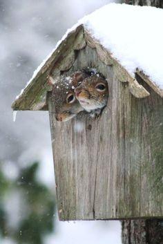 brrrr... koud buiten!