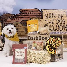 Saddle up, pup! We're hittin' the trail with The Good, The Bad and The Pugly. This Barkbox is loaded with toys and treats for the quickest paws in the Wild, Wil Funny Dog Toys, Cute Dog Toys, Cute Dogs, Pup, Good Things, Puppies, Funny Dogs