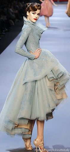 Christian Dior Haute Couture   S/S 2011. I want to go to a very fancy event in this.
