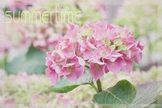 summertime for Texture Tuesday   par odile lm