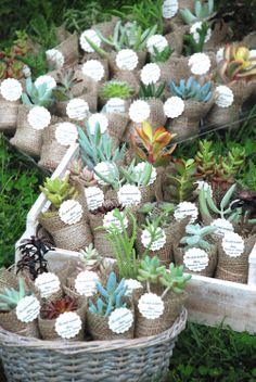 #flower #wedding #favors, #plantfavors, #smallplant #gift, #succulents #pots #plante #marturii, #suculente #marturiinunta, #suculentemarturii, #marturiibotez, #ghivecemarturii , #suculentemarturii