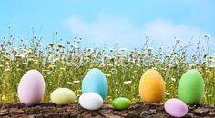 Uova Di Pasqua Sul Prato Fiorito/Easter Eggs In The Meadow  SEE MORE OF MY EASTER IMAGES HERE: http://it.fotolia.com/search?serie=50107671=0