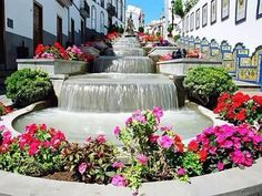 Firgas, Gran Canaria #Canarias