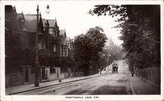 Nightingale lane