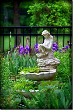 Fountain and Iris