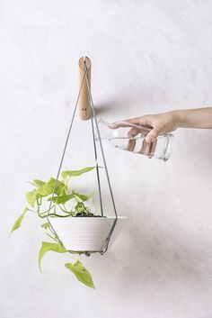 All kinds of decoration and decoration ideas as design, design free of charge are published on our website. You can come to our website to come up with designs that can bring ideas to your mind 35 DIY Vertical Plant Hanger Wall Plant Hanger, Macrame Plant Hangers, Plant Wall, Plant Decor, Small Plants, Air Plants, Indoor Plants, Indoor Herbs, Indoor Gardening