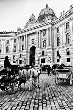 A horse carriage (in Vienna called 'Fiaker') is inviting to a ride at the Hofburg Palace in Vienna. by Streetphoto Vienna on Vienna Summer, Austria Travel, Horse Carriage, Horse Drawn, New Poster, Vienna Austria, White Aesthetic, Floating Frame, Salzburg