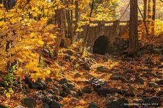 An autumn scene at Devil's Lake State Park in Baraboo, Wisconsin. www.devilslakewisconsin.com